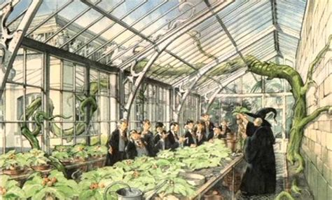 image herbology classroom concept artwork 01 jpg harry potter wiki fandom powered by wikia