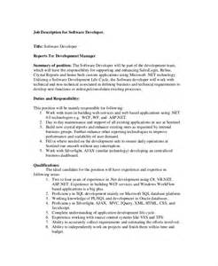 software engineer description 11 free word pdf