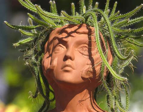 Medusa Planter Medusa With Cactus Hair Aloe Succulent Amp Cacti Plants