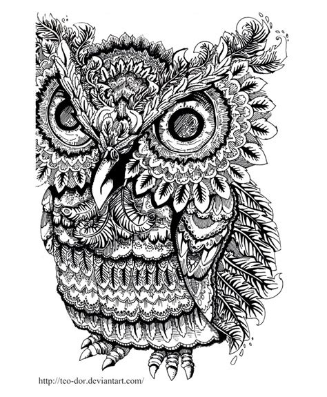 coloring pages of big owl everything you need to know about adult coloring the