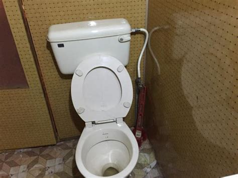 toilette mit wasserstrahl no water jet or toilet paper in the toilet picture of