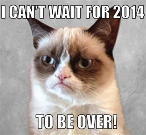 New Grumpy Cat Meme - grumpy cat new years meme 28 images 1000 images about