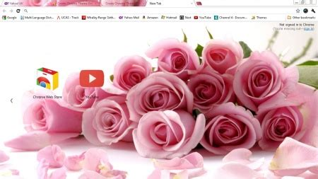 theme rose chrome 1000 images about technology google chrome on pinterest