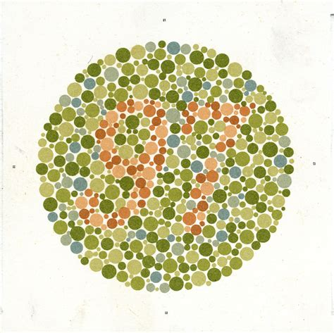 what does it to be color blind what does it look like to be color blind