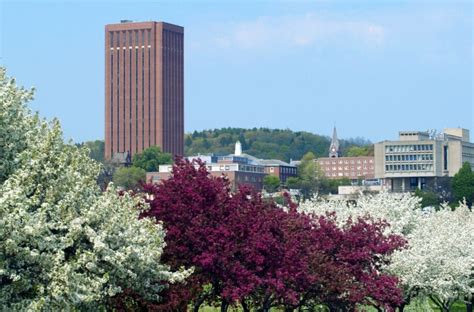 Of Massachusetts Amherst Mba by Umass Amherst Admissions Sat Scores Acceptance Rate