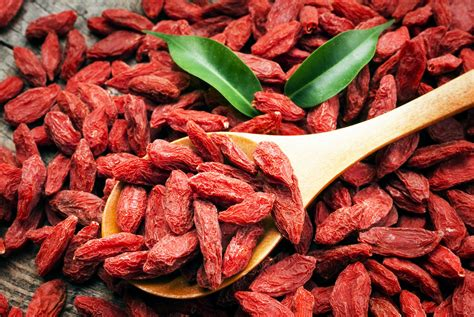 Goji Berry watchfit the 5 benefits of goji berry