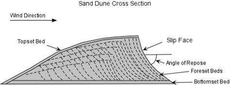 sand dune cross section deserts
