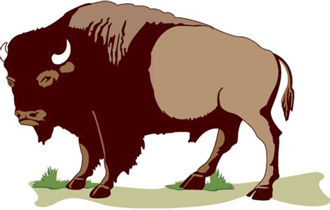 clipart gallery free free buffalo clipart clip image 1 of image 22815