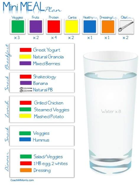 portion template 70 best images about 21 day fix 1 200 calories on