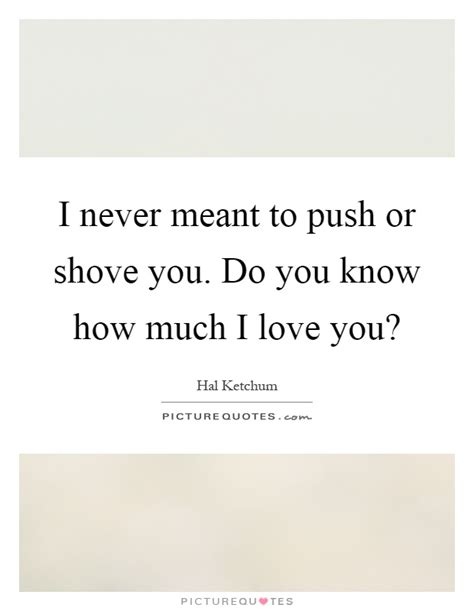 I never meant to push or shove you do you know how much i love picture quotes