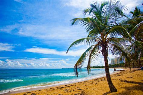 fondo pantalla playas taringa 1024x600 fondo de pantalla semanal playa y palmeras en costa rica