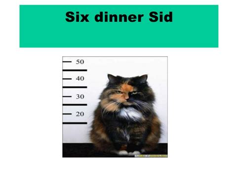six dinner sid six dinner sid by aratz and aner