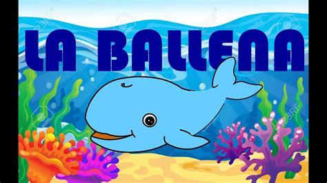 ballenas animadas ballena animada canto de ballena caracteristicas y otros