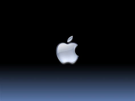 apple design apple design apple logo designs apple logo funny
