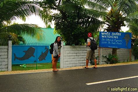ermi resort map hotels in oslob cebu gallery