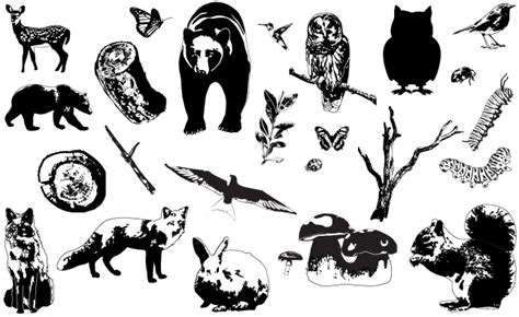 forest animals vector pack by go media s arsenal