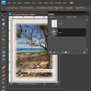 Tutorial Adobe Photoshop Elements 8 | tutorial wideo zdjęcie w ramce adobe photoshop elements
