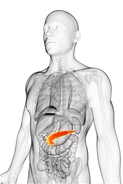 emorroidi interne cure naturali emorroidi esterne cura naturale veloce e rapida rimedi