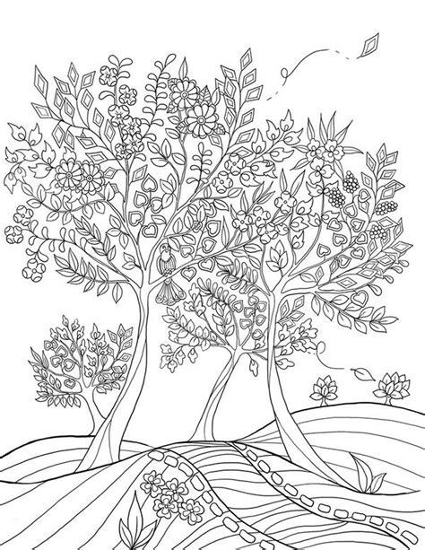 libro mums colouring book of 908 mejores im 225 genes de coloring pages en libros para colorear p 225 ginas para