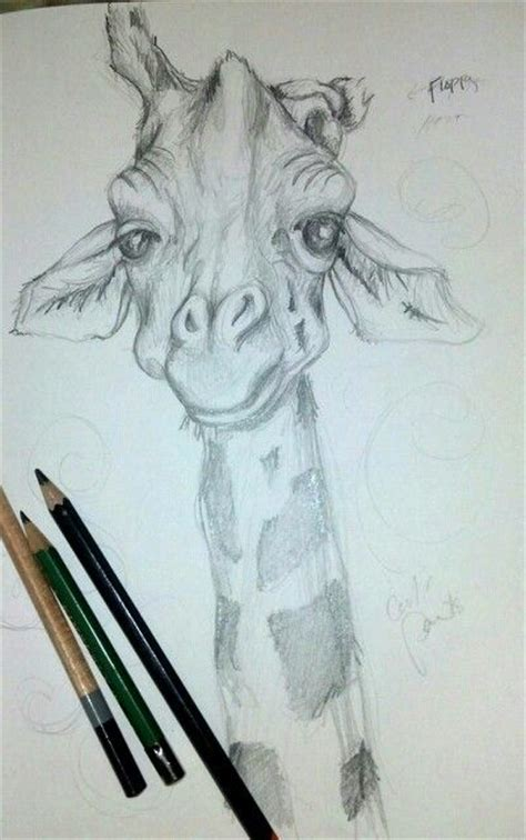 imagenes de jirafas para dibujar a lapiz hayliepowers art in all you see pinterest dibujo