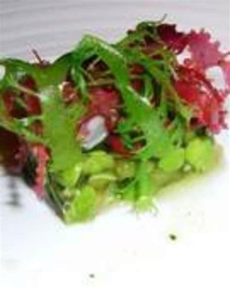 cucinare le alghe le alghe in cucina terra nuova