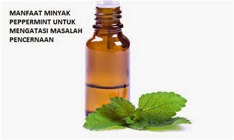 Minyak Peppermint manfaat minyak peppermint untuk mengatasi masalah pencernaan