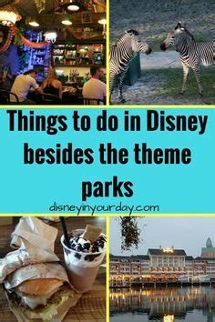 1000+ ideas about disney world theme parks on pinterest