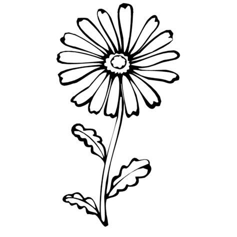 fiore disegno disegno di fiore margherita da colorare per bambini