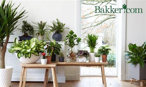 johns bedroom barn foam warehouse 100 photo plantenbak wit met frisgroene bekijk de