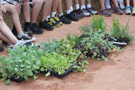 School Gardening Club Ideas Elementary School Garden Club Ideas Photograph Students Of