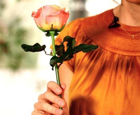 cara membuat minyak kemiri agar tahan lama cara merawat bunga mawar potong agar tidak cepat layu