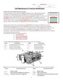 cell membrane coloring worksheet answer key cell membrane coloring worksheet answer key abitlikethis