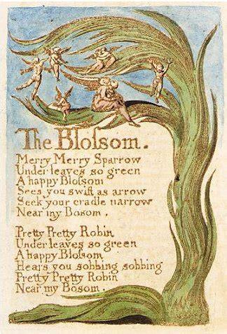 the blossom wikipedia
