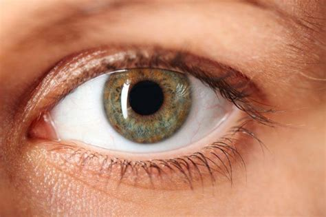 Imagenes De Ojos Vacanos | conoce la escler 243 tica la parte blanca del ojo blog de
