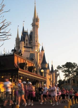 many new attractions and experiences coming for disney