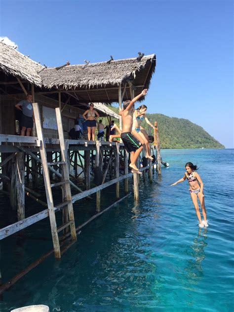 raja at dive resort dive centre raja at papua explorers resort