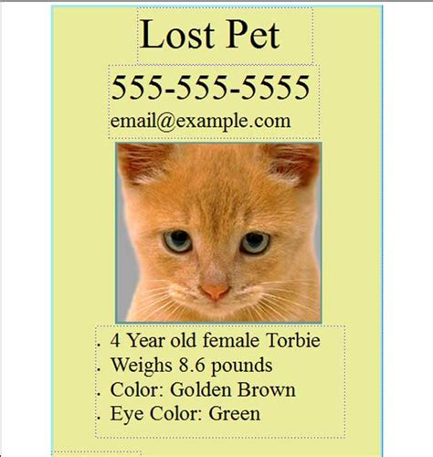lost pet flyer template free free pet lost flyer template free flyers