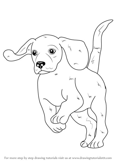 how to a beagle learn how to draw a beagle farm animals step by step drawing tutorials