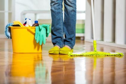 Cleaning Urine From by How To Remove Cat Urine Stains From Different Materials