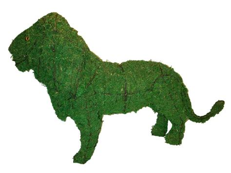 animal topiary frame animal topiary frame mossed 25x37x12