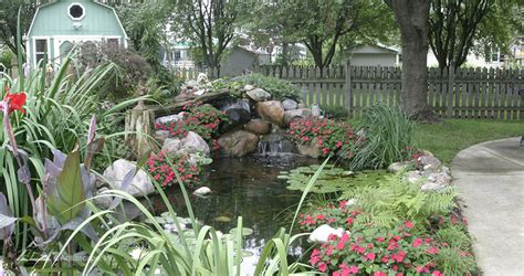 is a backyard pond an ecosystem water garden ecosystem ponds backyard pond designs