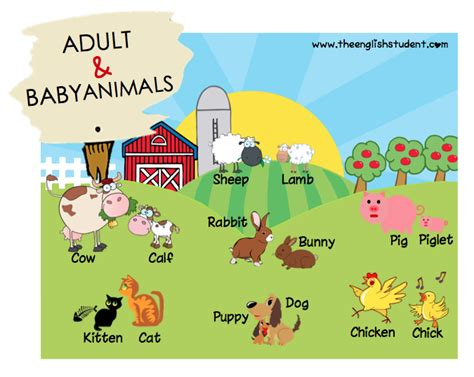 farm names baby farm animals names