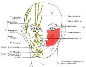 traitement orthodontique et chirurgie bimaxillaire de