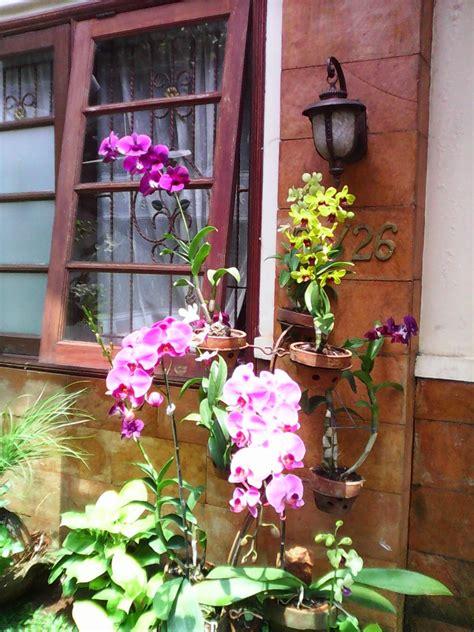 Jual Bibit Bunga Depok marketplace depok jual anggrek di grand depok city jasa perawatan bunga anggrek