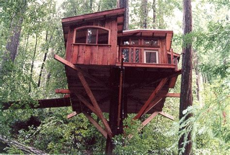 santa cruz tree house 18 best images about santa cruz tree house on pinterest santa cruz trees and home