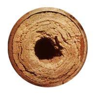Urinstein Entfernen Im Rohr 5769 by 214 Konal Faq Zu Harnstein Urinstein Sedimente Bei