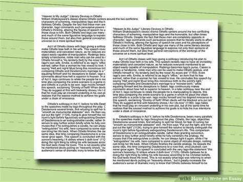 My Message To The World Essay by How To Write An Essay With Pictures Wikihow
