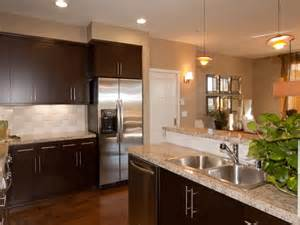 Modern Kitchen Paint Colors Ideas Paint Colors For Kitchens Designs Roselawnlutheran