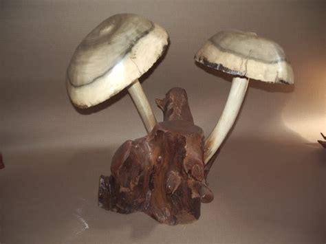 nitnot keracunan jamur cendawan