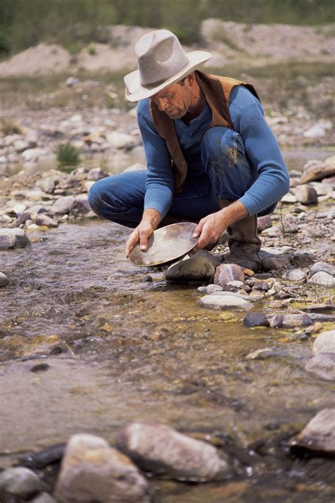 Finding In Usa Gold Panning Techniques In The Usa Finding Gold Golden Tips For Prospectors